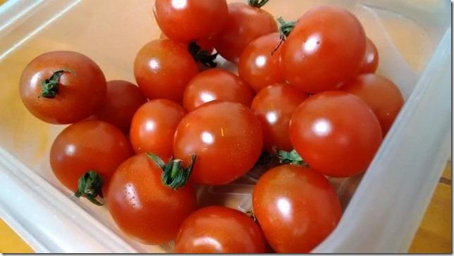 20170507-tomato