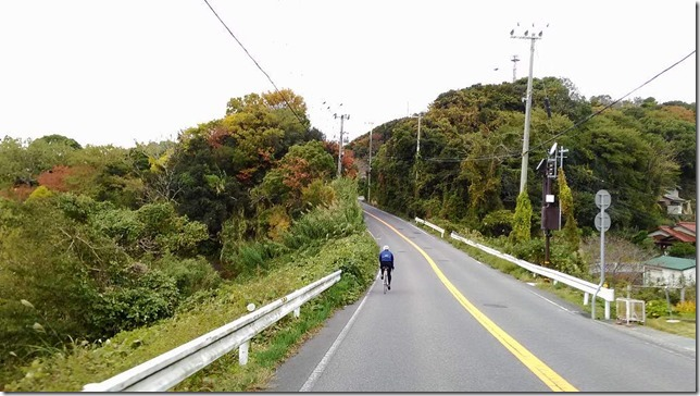 南淡路山岳コースを登り始める画像