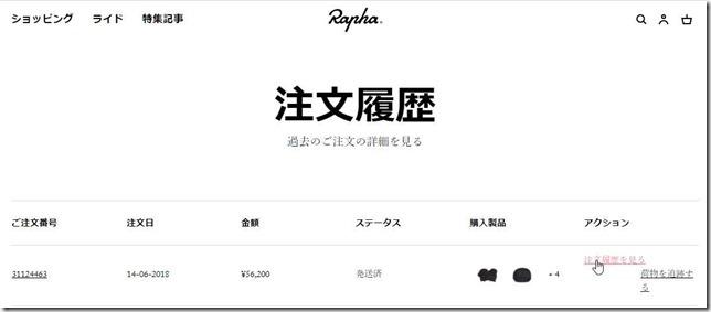 20180624-raphahenpin2