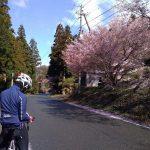 愛知県新城ミツマタ群生地を探す自転車旅2【435号通行止め】