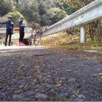 愛知県新城ミツマタ群生地を探す自転車旅4【甘い香り】