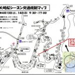 滋賀奥琵琶湖 海津大崎の桜を満喫するための基本情報!