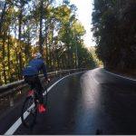 愛知県新城ミツマタ群生地を探す自転車旅1【極寒】