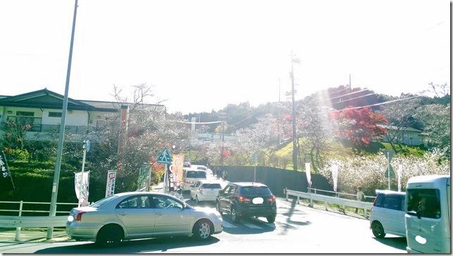 小原ふれあい公園入口で渋滞している画像